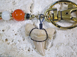 天然石&スエード★サメ歯化石キーホルダー【カーネリアン/オニキス/マザーオブパール】