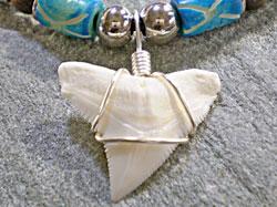 ダイバーに大人気★メジロザメ歯チョーカー