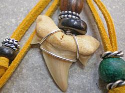 サーファーに大人気★サメ歯化石ストラップ